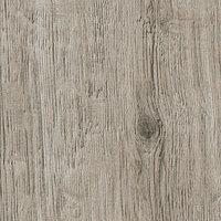 wellington oak